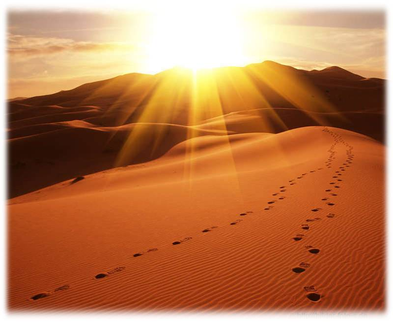 Imam al-Ghazâlî, sein Leben, sein Wirken, sein Weg (2/2)